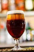 Beer in  bar — Stock Photo