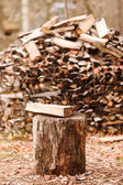 Firewood in the garden — Stockfoto
