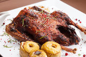Christmas roast goose — Stock Photo