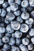 Fresh blueberry — Stock Photo