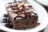 Fresh brownie — Stock Photo