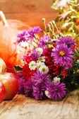 ημέρα των ευχαριστιών έννοια — Φωτογραφία Αρχείου