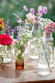 Different nice flowers — Стоковое фото