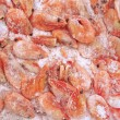 Prawns — Stock Photo #14362951