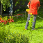 Gardener — Stock Photo
