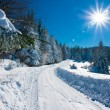 Winter Scene — Stock Photo #17614841
