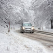 Winter Driving in Snow — Stock Photo #19981541