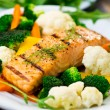 Salmon fillet — Stock Photo #22585543