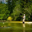 Stock Photo: Fly Fisher