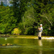Fly Fisher — Stock Photo