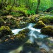 Flowing water — Stock Photo