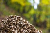 Wood pellets — Stock Photo
