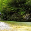 fly fishing — Stock Video