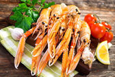 Fresh Scampi, Nephrops norvegicus — Stock Photo