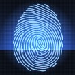 Stock Vector: Fingerprint identification