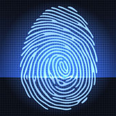 Fingerprint identification — Stock Vector