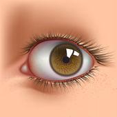 Open eye — Stock Vector