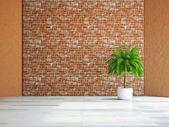 Rostlina u zdi — Stock fotografie