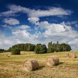 Big hay rolls on a beautiful field  — Stock Photo