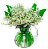 Fresh lilies of the valley in a glass jar isolated on white back — Zdjęcie stockowe