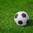 New soccer ball on green grass — Stock Photo