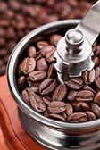 Coffee in a coffee grinder — Stock Photo