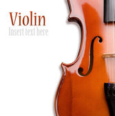 Violin on a white background. Insert your text — 图库照片