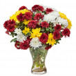 Chrysanthemums in a glass vase  — Stock Photo