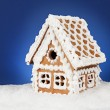 Homemade gingerbread house — Stock Photo #36990195