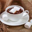 Hot chocolate and marshmallows — Stock Photo