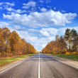 Stock Photo: Autumn road under beautiful sky