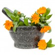 Mortar with calendula — Stock Photo