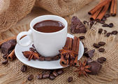 Hot chocolate, chocolate chips, cinnamon and star anise — Stock Photo