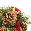 Christmas decorations — Stock Photo #15383025