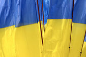Ukraine national flag, background — Stock Photo