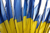 Ukraine national flag, background — Stock Photo