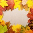 Frame composed of colorful autumn leaves — Stock Photo