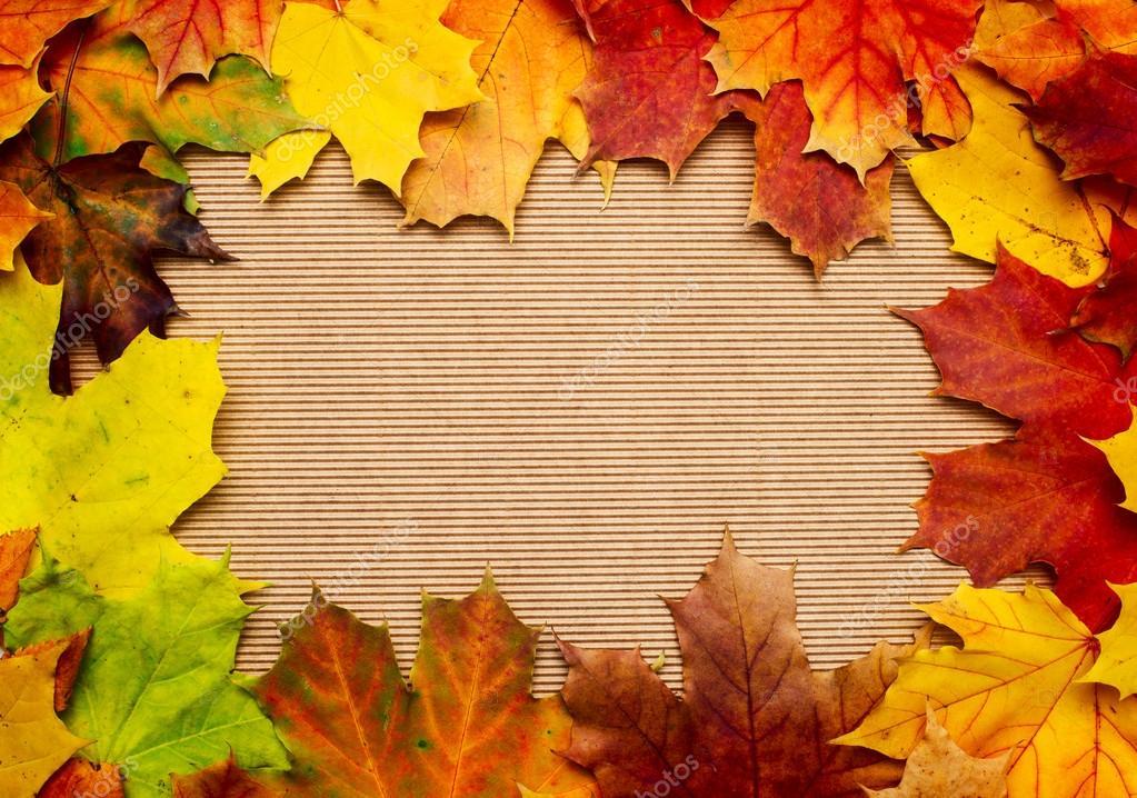 帧组成的多彩的秋天树叶