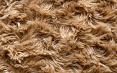 Artificial fur texture for background — Stock Photo