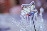 Frozen in the ice branches — Stockfoto