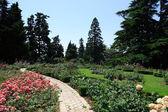 Botanical Garden — Foto de Stock