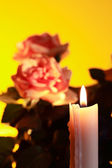 Candle And Flowers — Stockfoto