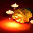 Rose And Candles — Stock Photo #22074879