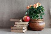 Gamla böcker och blommor — Stockfoto