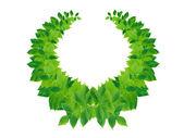 Green Leaves Wreath — Stock Photo