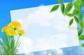 Yaz tebrik kartı — Stok fotoğraf