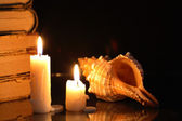 Candles And Shell — Stock Photo