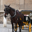 Horse And Coach — Stock Photo #36060225