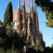 Sagrada Familia Construction — Stock Photo