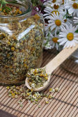 Dried Camomile — Stock Photo